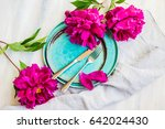 summer table setting with... | Shutterstock . vector #642024430