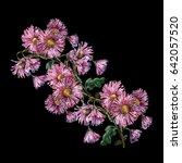pink chrysanthemum branch... | Shutterstock . vector #642057520