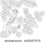 couple of parrots sitting in... | Shutterstock .eps vector #642057970