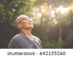 happiness asian senior man... | Shutterstock . vector #642155260