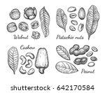 nuts set. ink sketch. hand...   Shutterstock .eps vector #642170584