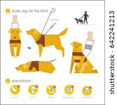 guide dog vector illustration... | Shutterstock .eps vector #642241213