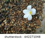 Small photo of Addendum with stone background
