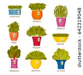 Indoor Gardening Icons With...