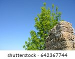 Wall And Tree Against The Sky