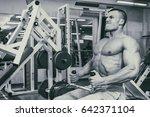 bodybuilder in the gym | Shutterstock . vector #642371104