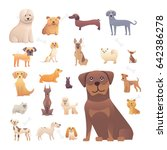 group of purebred dogs.... | Shutterstock .eps vector #642386278