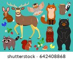woodland animals elements set | Shutterstock .eps vector #642408868
