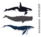 set of whales in simple... | Shutterstock .eps vector #642451609