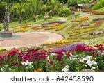 garden flowers | Shutterstock . vector #642458590