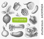 vegetables sketch illustration. ... | Shutterstock .eps vector #642459604
