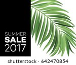 sale banner  poster with palm... | Shutterstock .eps vector #642470854