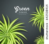 vector pandanus tree green... | Shutterstock .eps vector #642538414