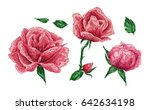 vintage pattern  rose  leaves ... | Shutterstock .eps vector #642634198