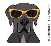vector illustration portrait of ...   Shutterstock .eps vector #642708244
