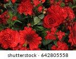mixed red flower arrangement ... | Shutterstock . vector #642805558