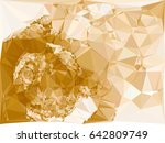 abstract monotone background... | Shutterstock .eps vector #642809749