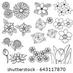flower vector line set | Shutterstock .eps vector #643117870