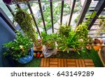 Natural Plants In The Hanging...