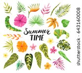 summer time lettering. tropical ... | Shutterstock .eps vector #643160008