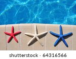 red  white and blue starfish... | Shutterstock . vector #64316566