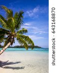 paradise tropical beach and... | Shutterstock . vector #643168870