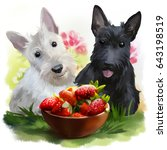 Two Scotties And Strawberries...