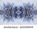 Fractal Tree Branch Background  ...
