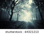 Path Through A Dark Forest
