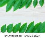 green leaf  frame on wood... | Shutterstock . vector #643261624