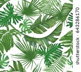 tropics  palm leaves  jungle.... | Shutterstock .eps vector #643286170