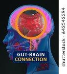 gut brain connection or gut... | Shutterstock . vector #643543294