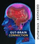 gut brain connection or gut... | Shutterstock . vector #643543300