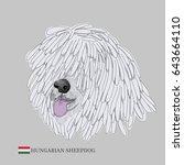 hungarian sheepdog portrait.... | Shutterstock .eps vector #643664110