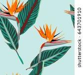 royal strelitzia. tropical... | Shutterstock .eps vector #643701910