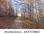 mountain trail through a forest ... | Shutterstock . vector #643710883
