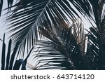 green palm leaf over sky... | Shutterstock . vector #643714120