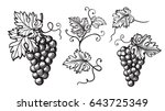 set of grapes monochrome sketch.... | Shutterstock .eps vector #643725349