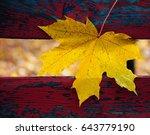 maple leaf | Shutterstock . vector #643779190