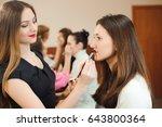 professional makeup artist... | Shutterstock . vector #643800364
