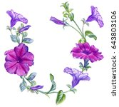 watercolor hand painted petunia ... | Shutterstock . vector #643803106