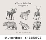 Forest Animals Drawings Set On...