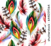 feathers painted in watercolor. ... | Shutterstock . vector #644059564