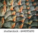 fresh fishes in the ice box  | Shutterstock . vector #644095690