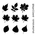 Silhouettes Of Leaves. Leaves...