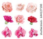 set of pink  red flowers and... | Shutterstock .eps vector #644127100