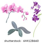 set branches orchid ...