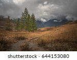 a lonely tree on a background... | Shutterstock . vector #644153080