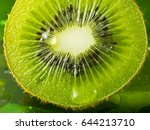 kiwi fruit nice detail with... | Shutterstock . vector #644213710