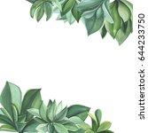 green plants succulents.... | Shutterstock . vector #644233750
